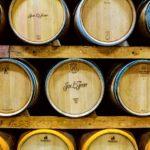 prohlídka s degustací vína