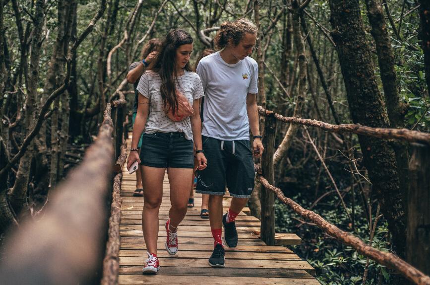 Procházka pralesem Jozani na Zanzibaru