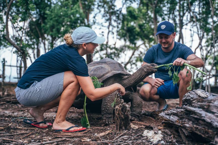 Krmení želv během výletu Zanzibaru